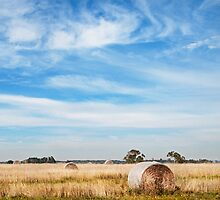 Hay Bales near Kyneton, 2012 by Liza Clements