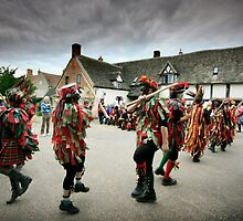 Foxs Morris at Foxtrot 2012 by Angie Latham