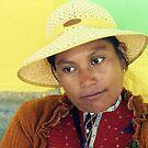 Señorita Sayulita by M.C. O'Connor