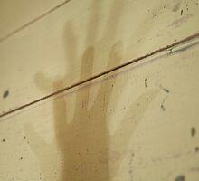 Shadow's Shadow © Vicki Ferrari by Vicki Ferrari
