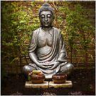 Buddha by Wolf Sverak
