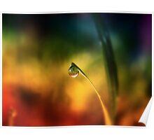 rainbow dew drop Poster