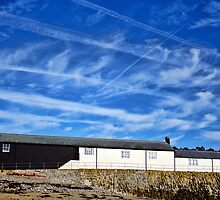 Contrails Over The Cobb ~ Lyme Regis by Susie Peek