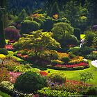 Sunken Garden - Butchart Garden by Yannik Hay
