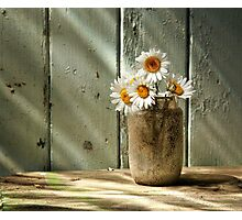 A Jar of Daisies Photographic Print
