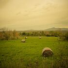 Hay Bales in a Farmer&#x27;s Field ~ Vintage Photography by Chantal PhotoPix