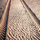 Sand Tracks by Adrian Evans