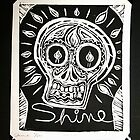 Shine by Suzi Linden by Suzi Linden