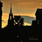 Historic Charleston SC VI by PJS15204
