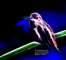 Allens Hummingbird - Fractal by Rateitart