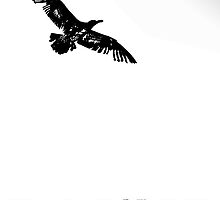 """flying into the unknown """"in memoriam"""" by dedmanshootn"""