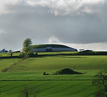 Newgrange in the Afternoon Light by Elmacca