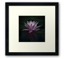 Peaceful night Framed Print