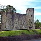 Strathaven Castle by Stuart  Fellowes