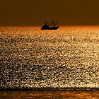 golden sea by wiwi