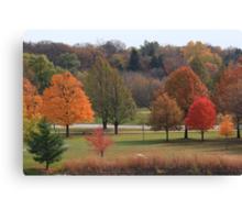Autumn Lights Canvas Print