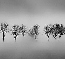 Minimal (13) by StefaniaC