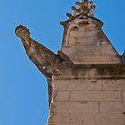 A church grotesque by Michael Brewer