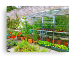 The Greenhouse Canvas Print