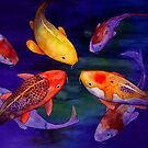 Koi Friends by Robert Hooper