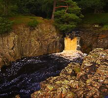 Low Force, River Tees, Upper Teesdale North England by Ian Alex Blease