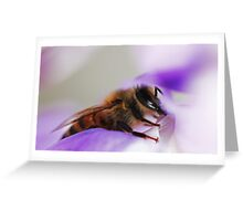 Bee On A Wisteria Flower Greeting Card