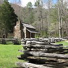 Olivers Cabin - GSMNP by JeffeeArt4u