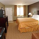 quality inn & suites magic kingdom by hotelreservatio