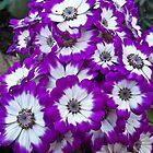 Purple Bouquet by mamasita