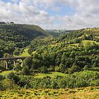 Monsal Head by John Dunbar