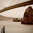 Golden Gate Bridge by camfischer
