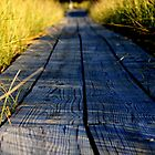 Boardwalk Pathway by Ted Schlosser