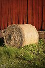 Bale Of Hay by Madeleine Forsberg