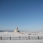 Chinggis Khan Monument in Winter by Citisurfer