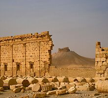 Palmyra in the desert by Citisurfer