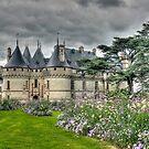 """"""" Chaumont-sur-Loire  """" by jean-jean"""