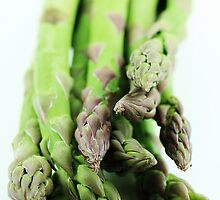 Asparagus by MelissaSue