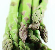 Asparagus by MelissaSue