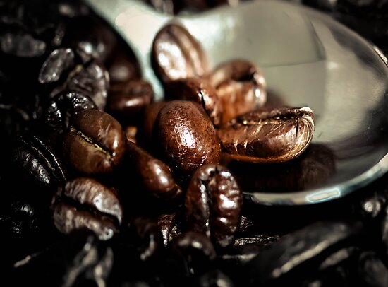 Coffee Beans by Melissa Dickson