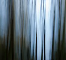 Trees of Blue by Annie Lemay  Photography