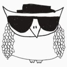 Heisenberg, the owl by annieclayton