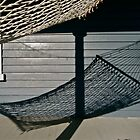 MY HAMMOCK by cammisacam