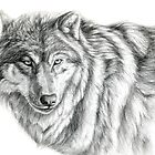Wolf g2012-031 by schukina by schukinart