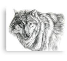 Wolf g2012-031 by schukina Metal Print