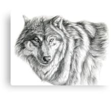 Wolf g2012-031 by schukina Canvas Print