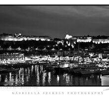 Monte-Carlo Bay by gabriellaksz