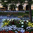 Chateau Lake Louise by Vickie Emms