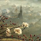 detail of a foggy morning... by StefaniaC