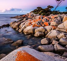 Bay of Awesome by Simon Baker