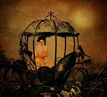 Midnight Throne by Pamela Phelps